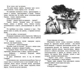 Тарас Бочаров, Екатерина Комракова. Полуполосная иллюстрация к VIII главе